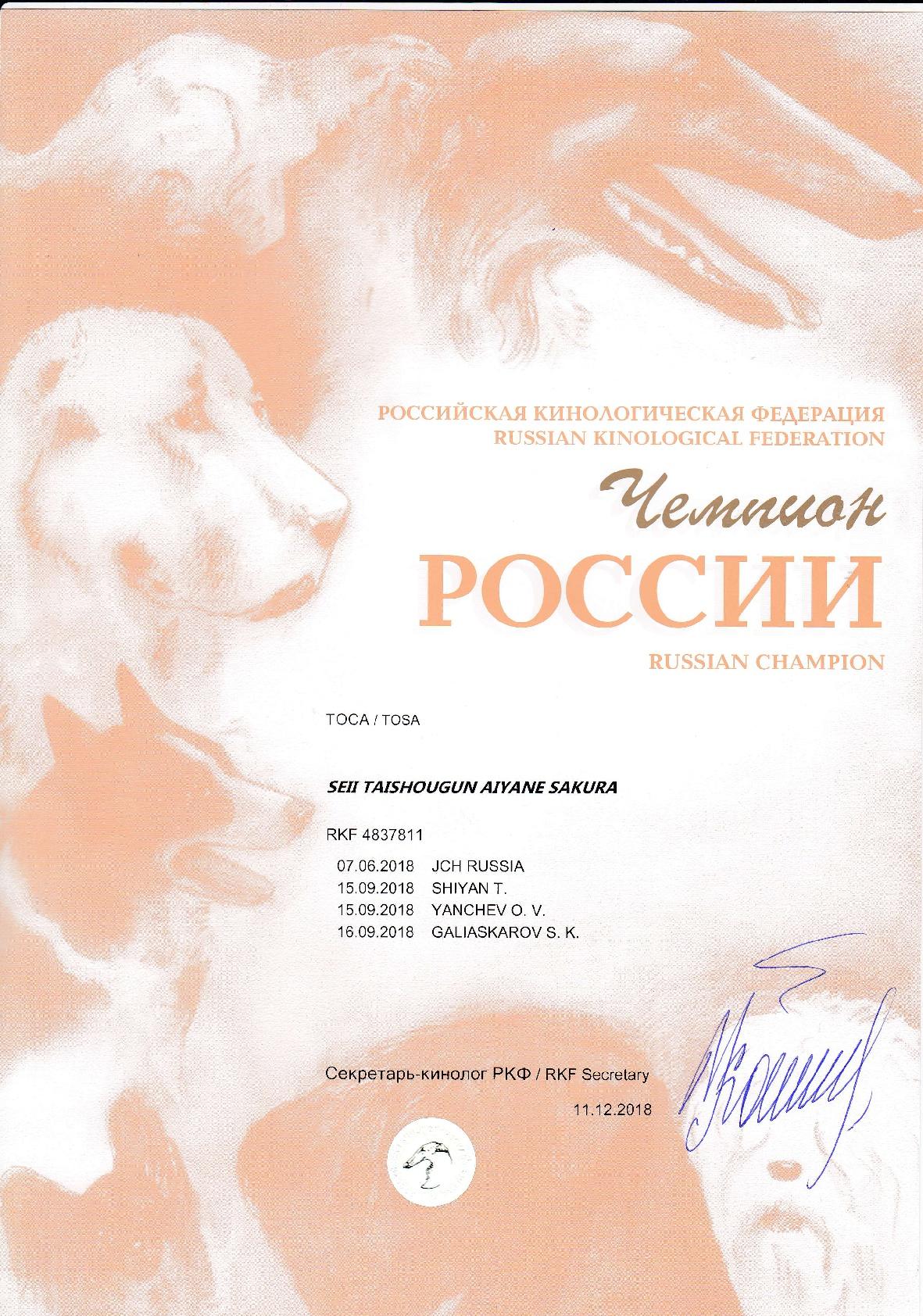 Мамба Ч.России
