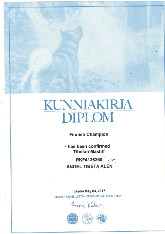 Чемпион Финляндии