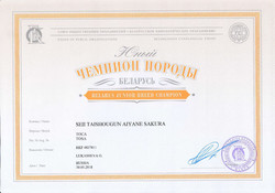 Мамба Ч.Породы Беларуси