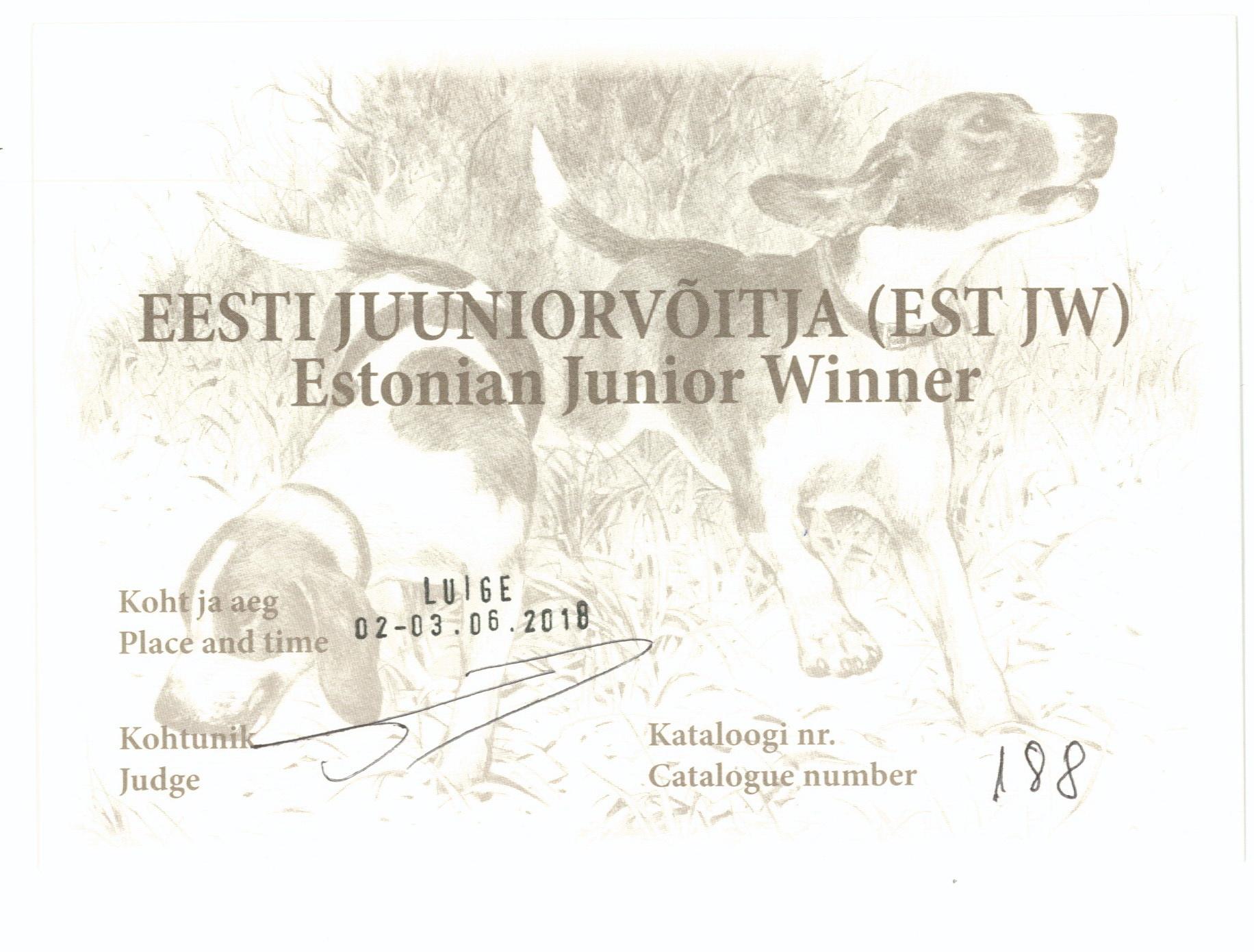 Мамба Ю.Эстония Виннер