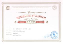 Бриджита ГЧБеларуси