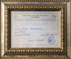 Чемпион Грузинской Кинологической Федерации