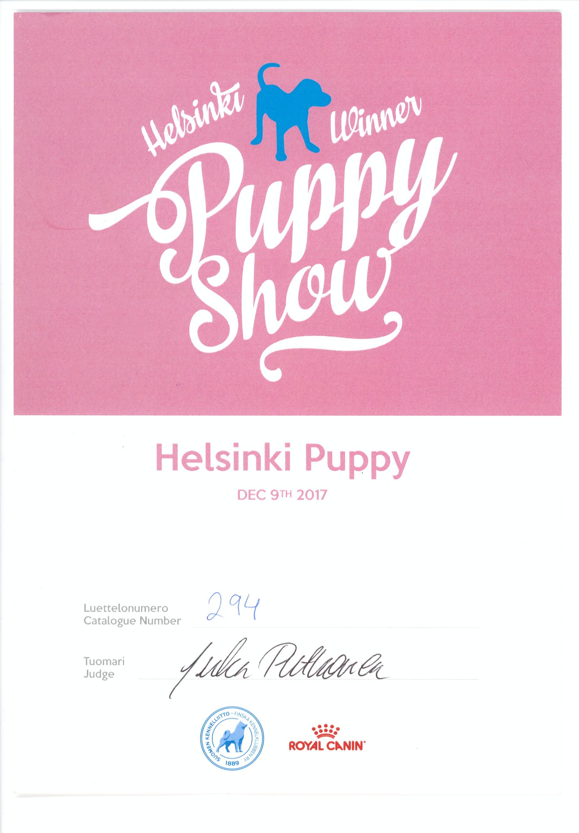 Шон 9.12.17 Хельсинки ВОВ puppy