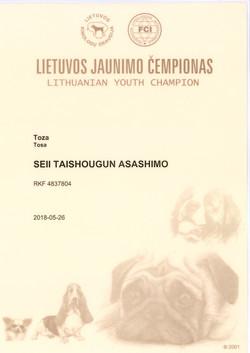 Шон Ю.Ч Литвы (2)