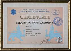 Чемпион Армении