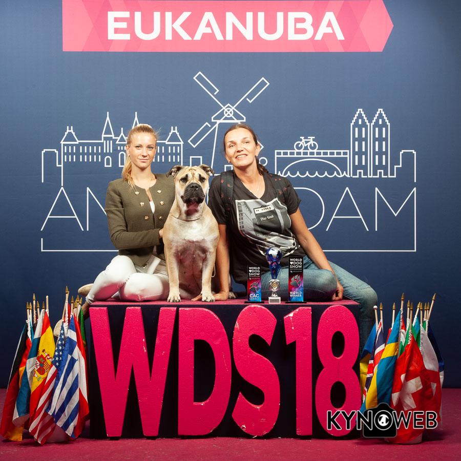 FREE_PICTURE_876_1_FREE_EUKANUBA_WDS_201