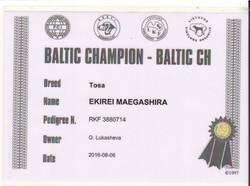 Чемпион Балтии