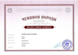 Чемпион породы Беларусь