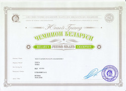 ШОН ЮГр.Ч.Беларуси