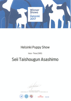 Шон Хельсинки Виннер 2017