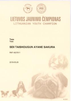 Мамба Ю.Ч Литвы (1)
