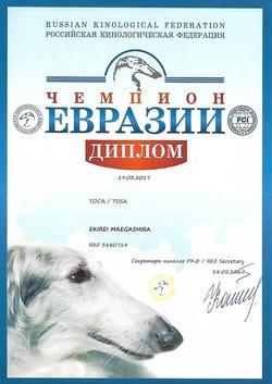 Чемпион Евразии 1