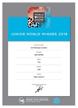 Шон JWW-2018