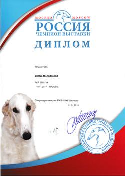 Кира Россия