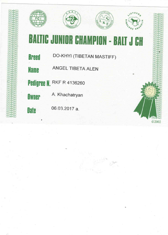 Юный Чемпион Балтии
