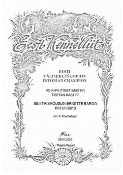 Ч.Эстония Бриджита