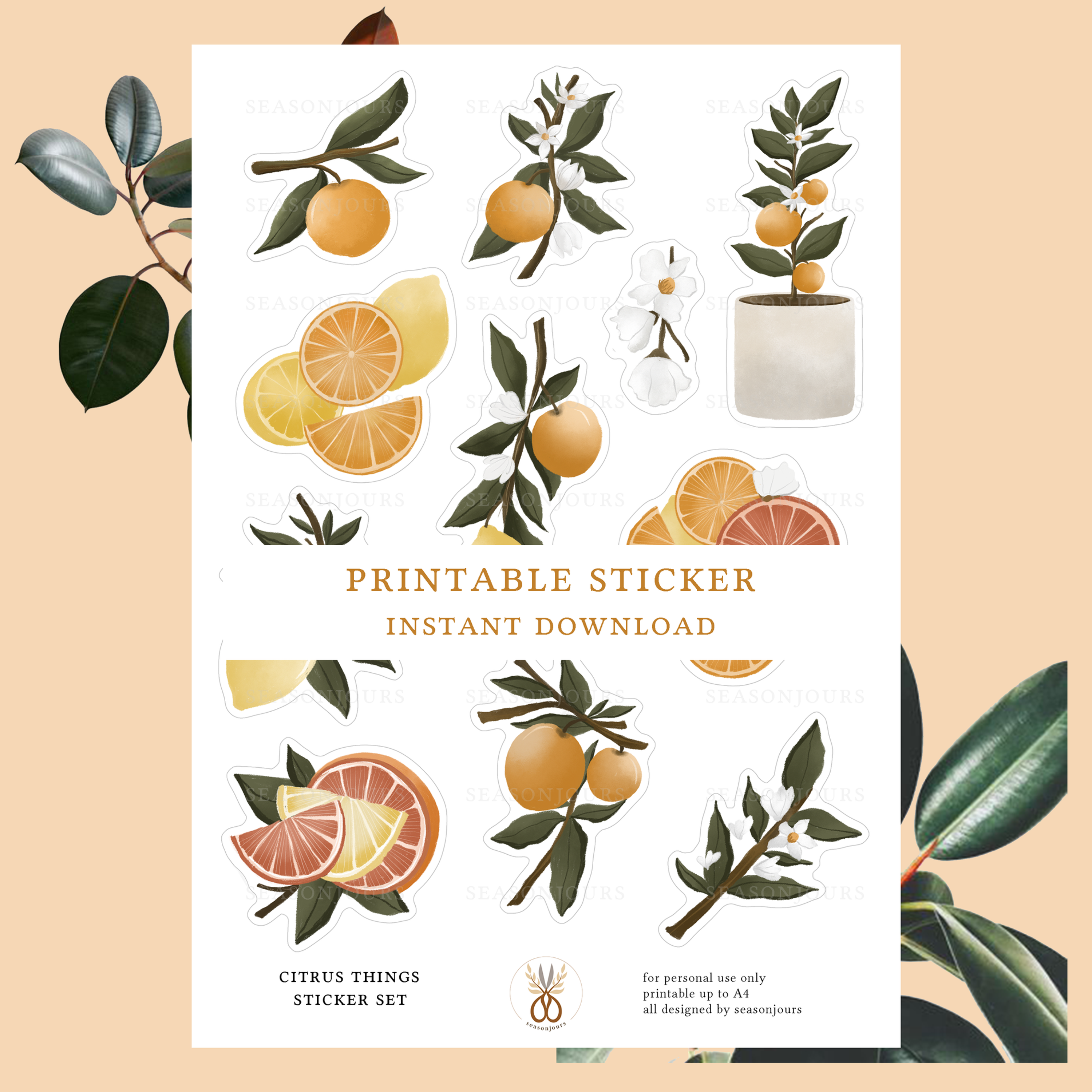 image relating to Printable Things referred to as Citrus Aspects Printable Sticker Fixed