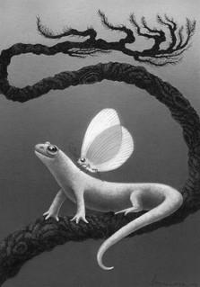 """Minky the Moth and her Salamander Salvator"""
