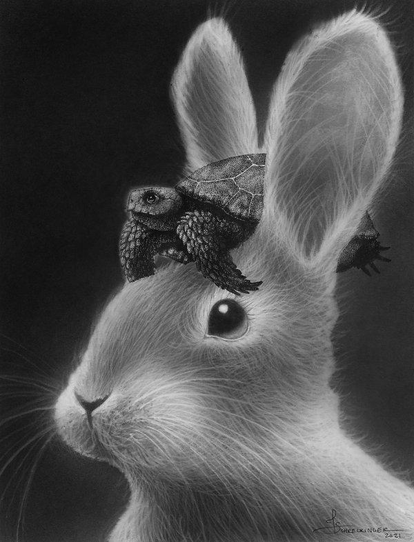 rabbitsmall.jpg