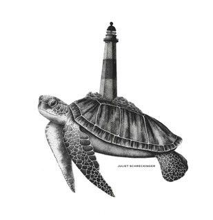 """The Turtle's Lighthouse"""