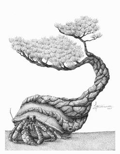 """Tuck's Tree"""