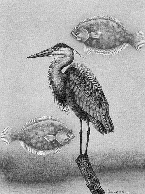 """""""Herman the Heron and his Flying Flounders"""" Archival Print"""