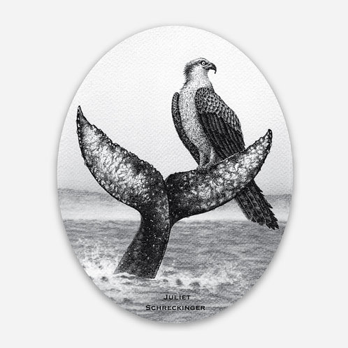 """Oliver Osprey"" Sticker"