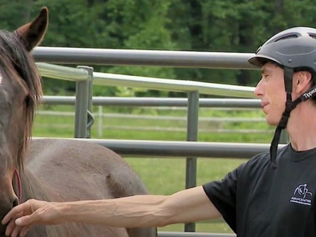 Horses in the Morning: Mission Mustang and a Horse Health Segment