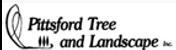 logo_pittsford.png