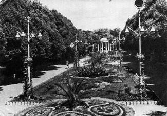 15. Конец 1964 г., вид с крыши на газоны