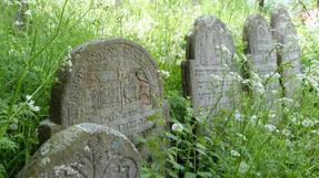 Kárpátaljai falucska magánháza kertjében a valaha itt volt zsidóság sírjait átengedi a Végleges Feledés a Zöldforradalom feltartózhatatlan győzelmének. Az Elfeledés Békéje megteremti a Természet és az Ember végső egymásra találását. /Galambos-Golubinye-Ukrajnában, mostanság. /