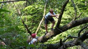 Áron és Nóri bunkert építenek a kidőlt fákból. Kétvölgy környéki erdők, Őrség.
