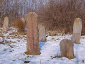 A kihalt zsidótemető mérhetetlen csöndje, túl a bokrok és a csalitos védelmén.
