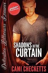 ShadowsCurtain_CVR_XSML COVER.jpg