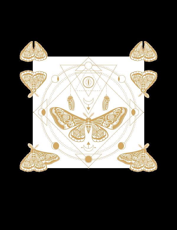 Untitled design - 2021-02-05T090315.663.