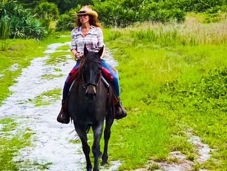Wagon Wheeled Wild Life