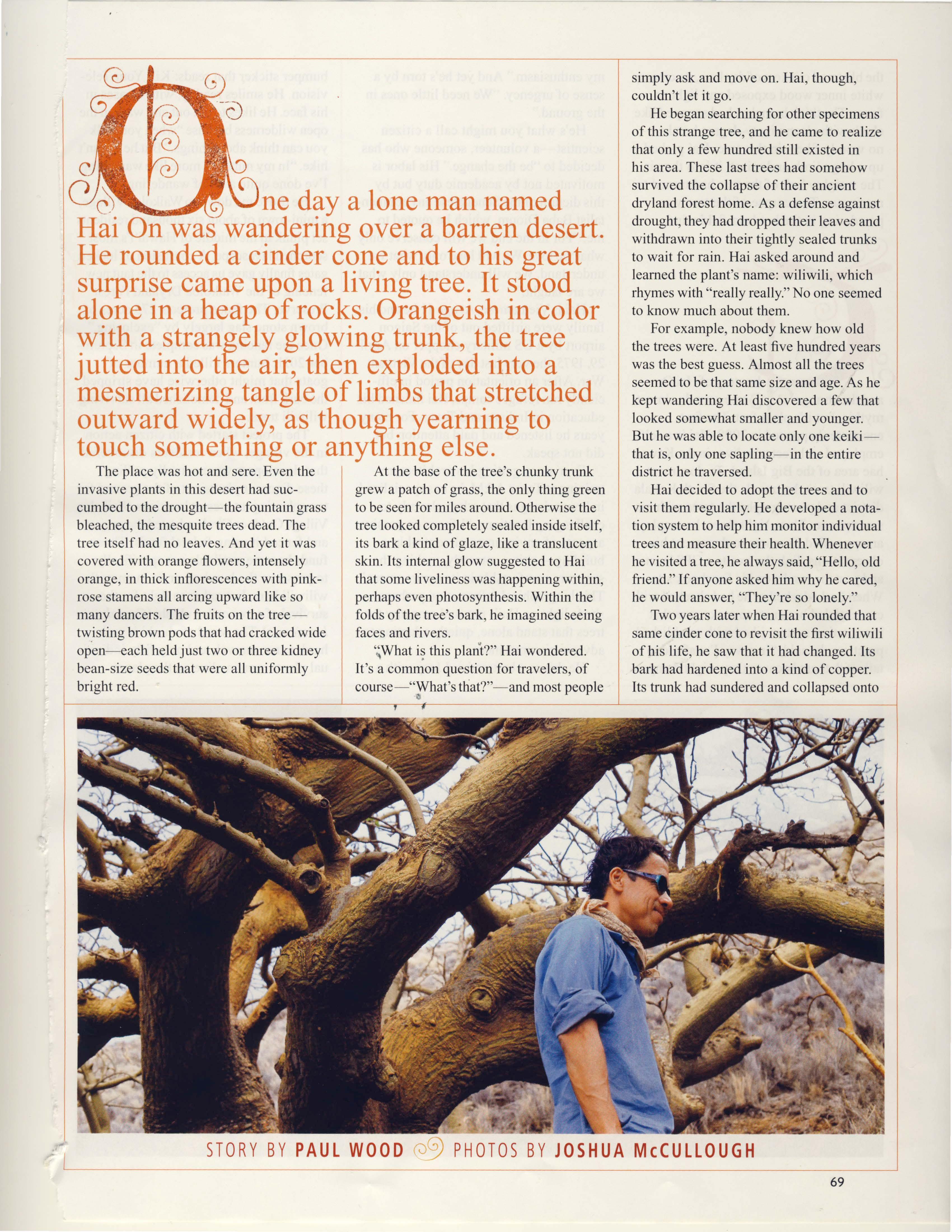 Ancient Wiliwili Trees_Page_05.jpg