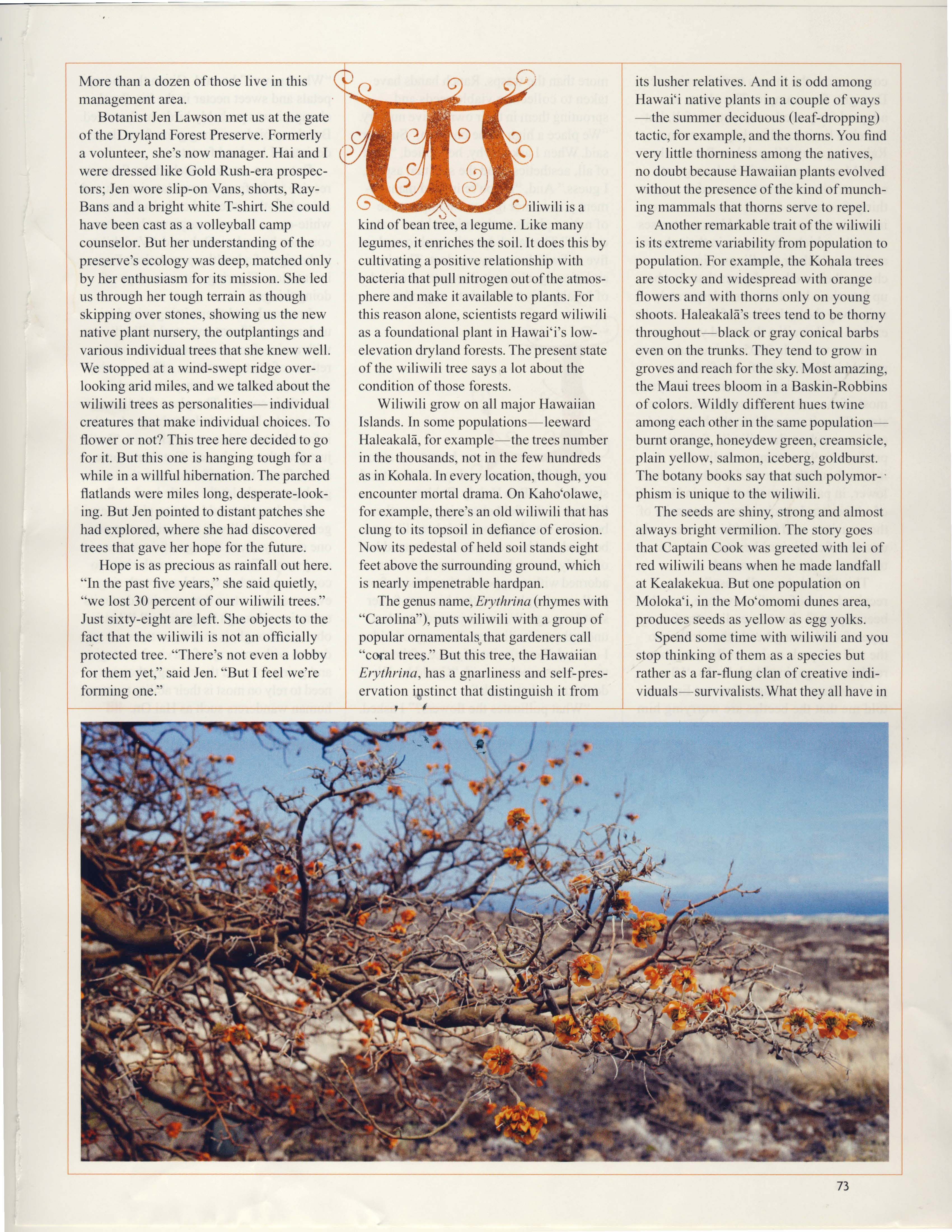 Ancient Wiliwili Trees_Page_09.jpg