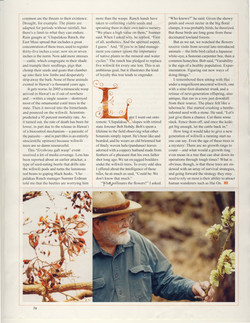Ancient Wiliwili Trees_Page_10.jpg