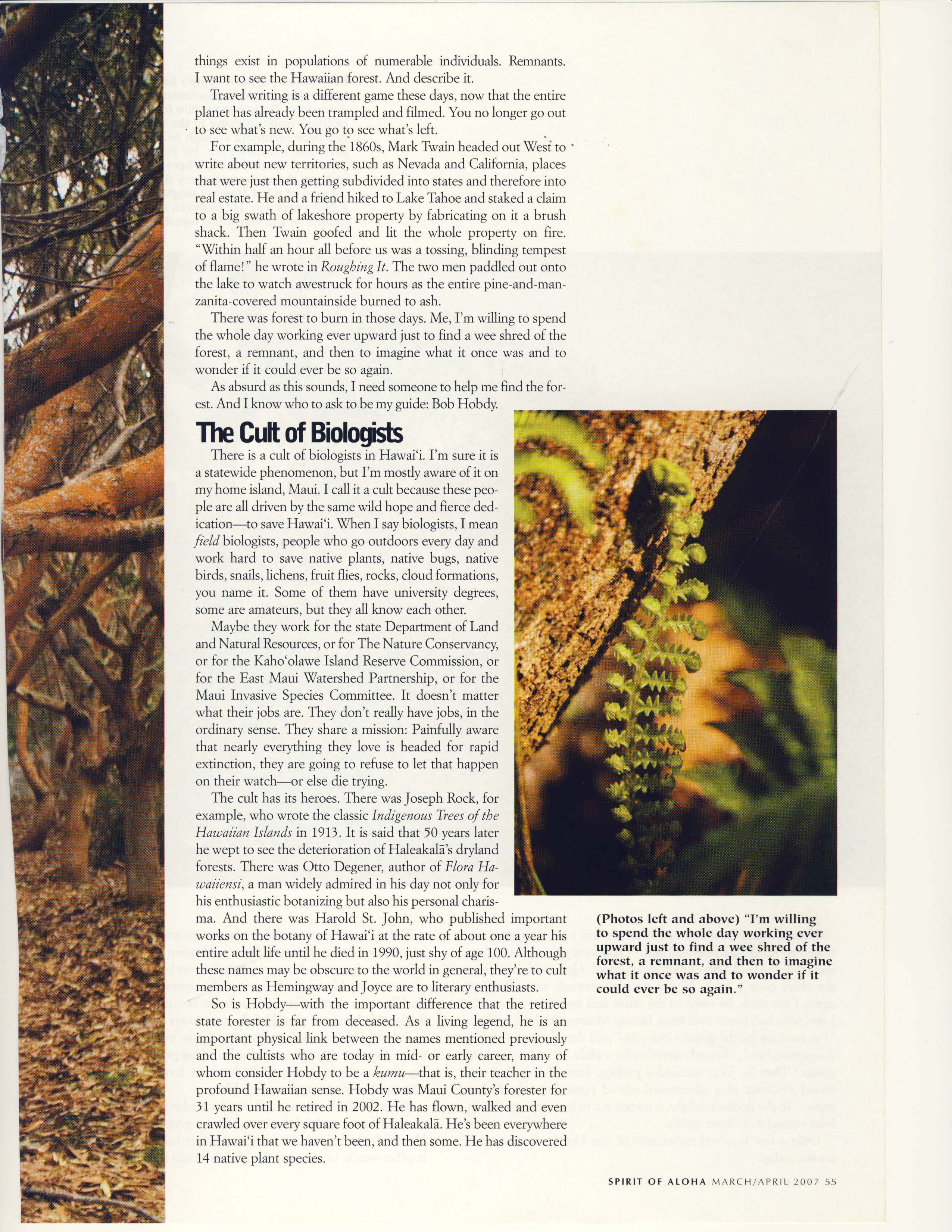 Forest Primeval Hawaii_Page_06.jpg