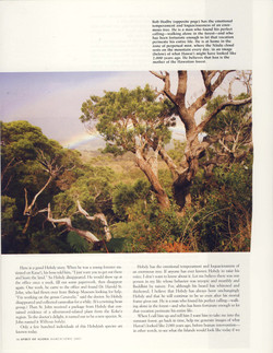Forest Primeval Hawaii_Page_07.jpg