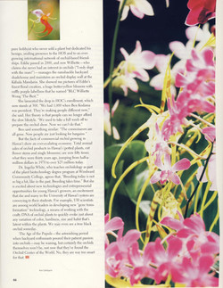 Orchids in Hawaii_Page_10.jpg