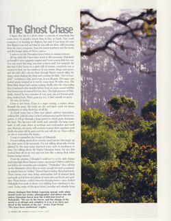 Forest Primeval Hawaii_Page_03.jpg