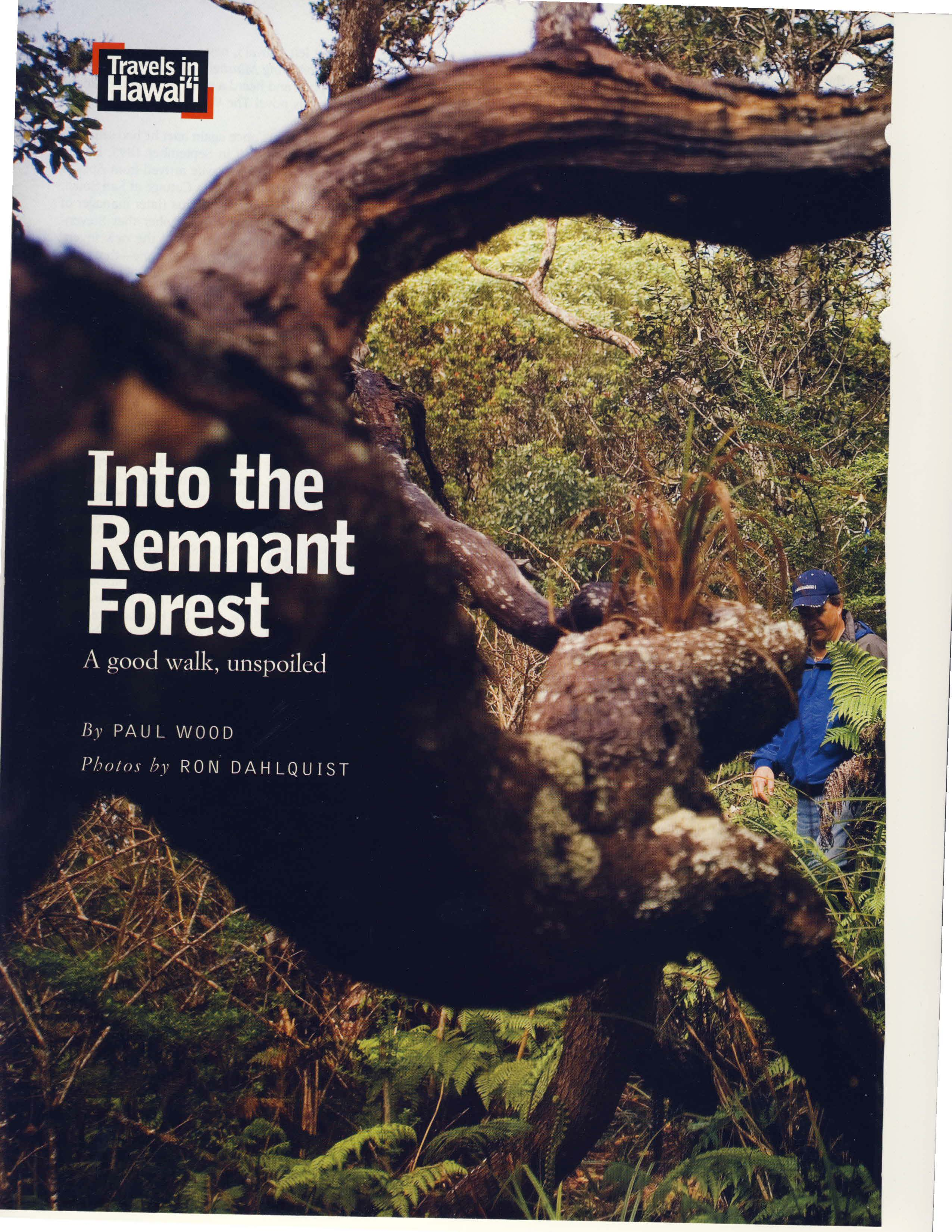 Forest Primeval Hawaii_Page_01.jpg