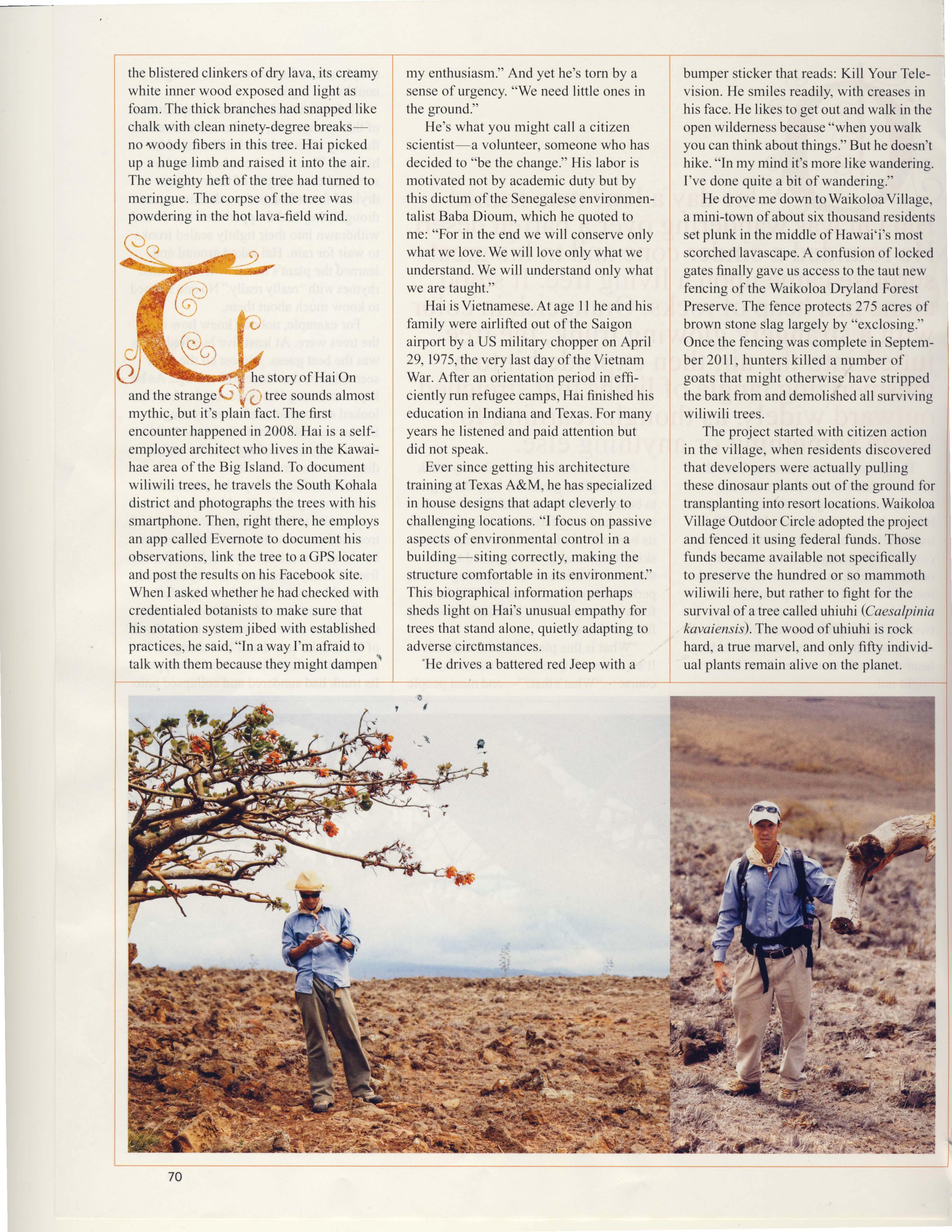 Ancient Wiliwili Trees_Page_06.jpg