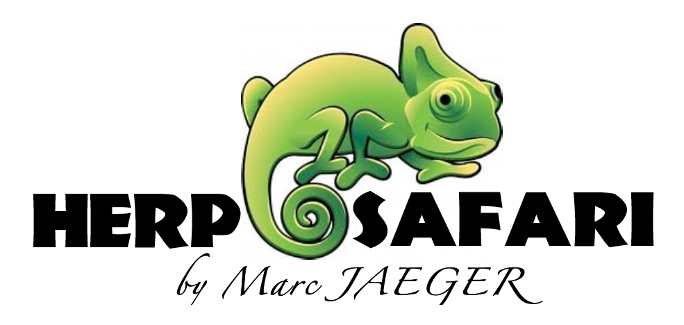 Herp Safari by Marc Jaeger