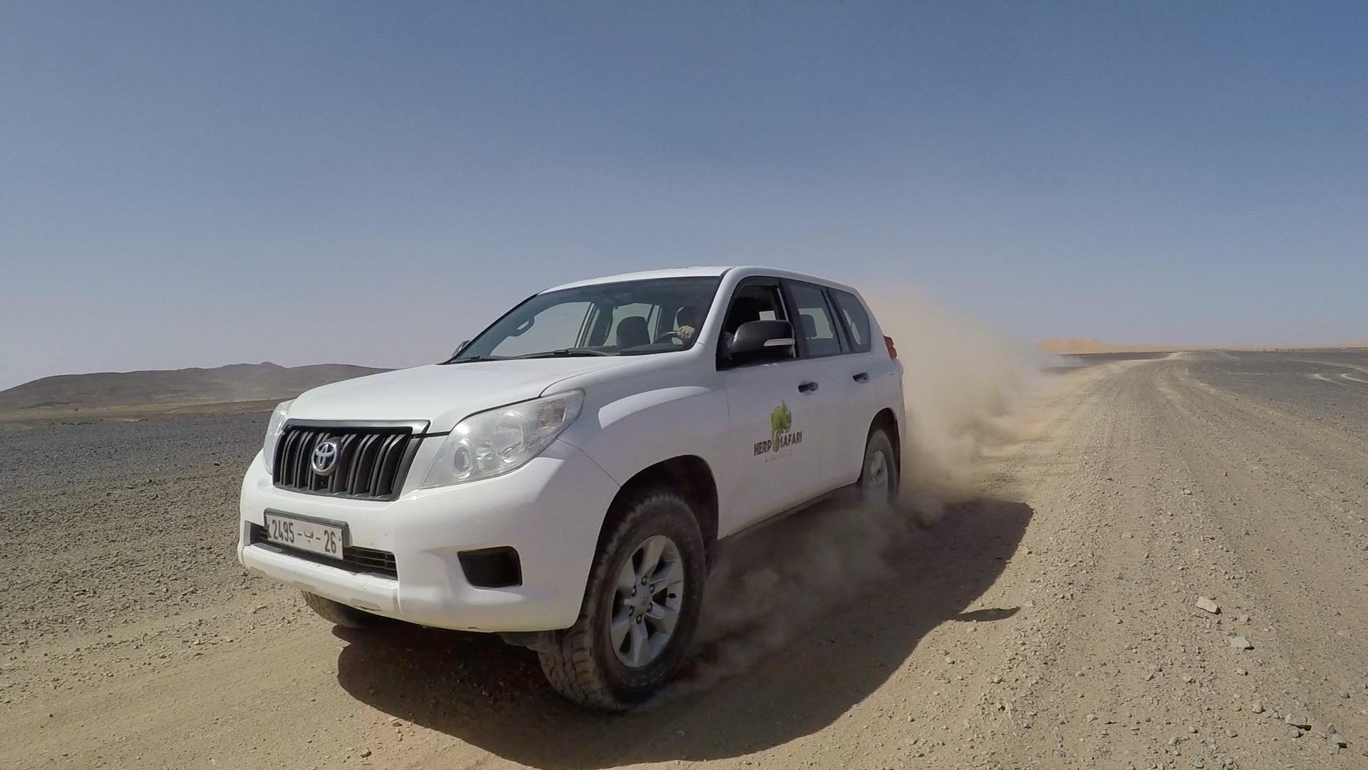 Aventure 4x4 du désert
