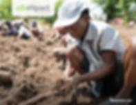 Screen Shot 2019-07-19 at 2.46.08 PM.png