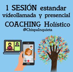 Sesión Coaching estandar puntual.  1 hora cada una.  Precio: 55€
