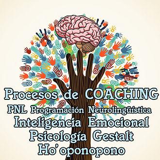 MANO ARBOL coaching 2 .jpg
